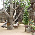 Courtyard of the Tonle Bati Temple